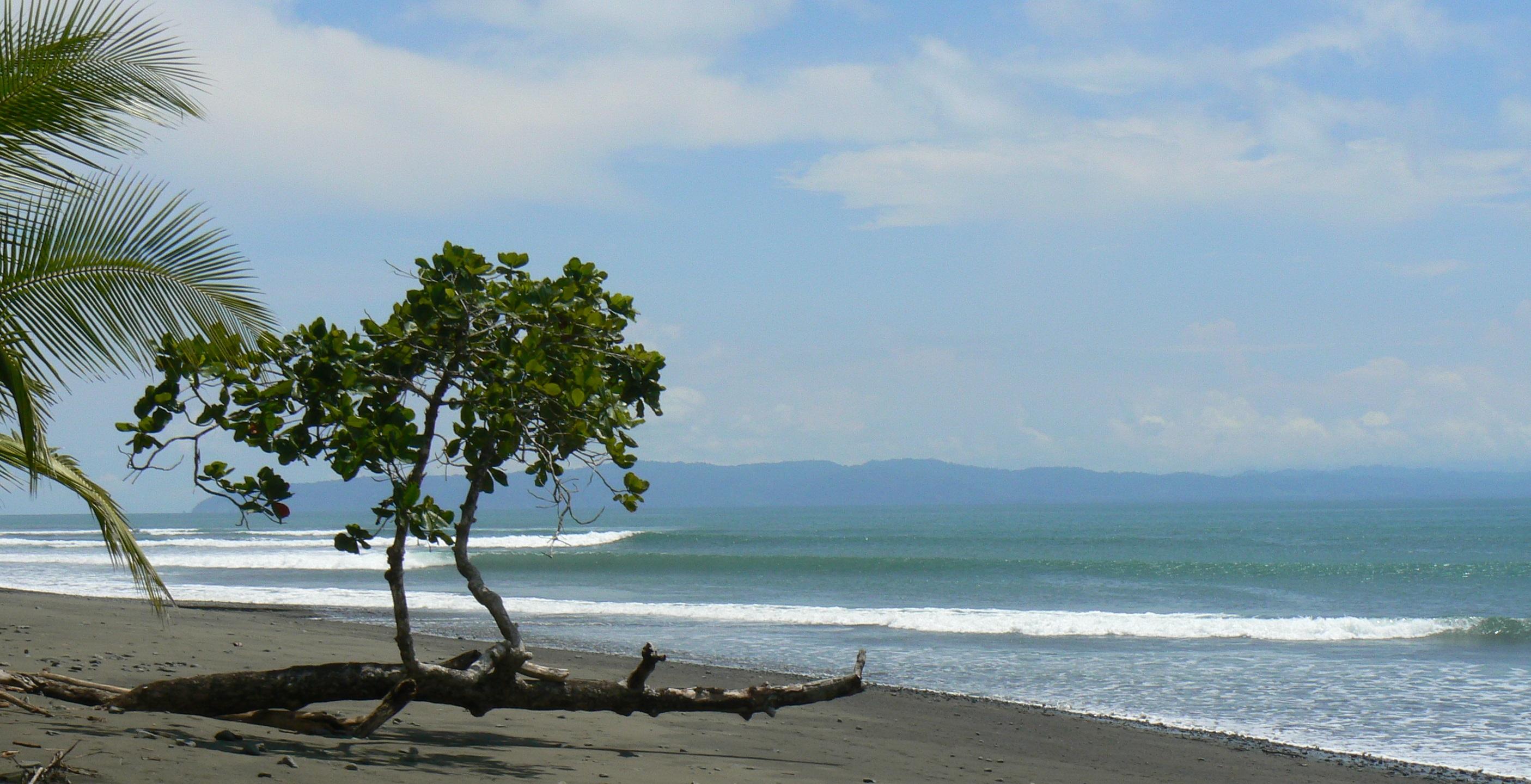 cropped beach P1060435